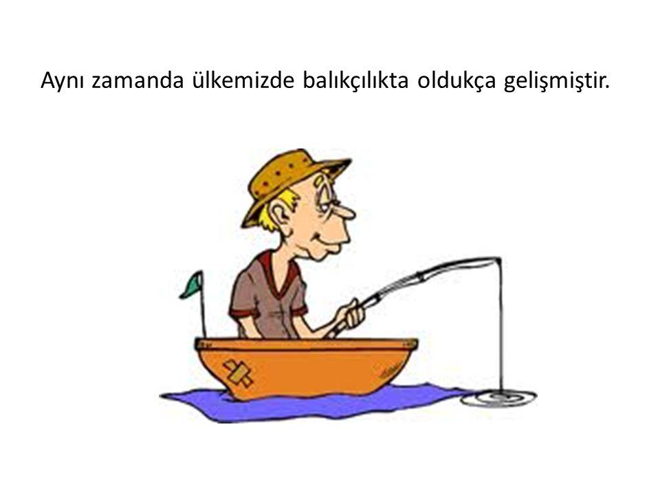 Aynı zamanda ülkemizde balıkçılıkta oldukça gelişmiştir.
