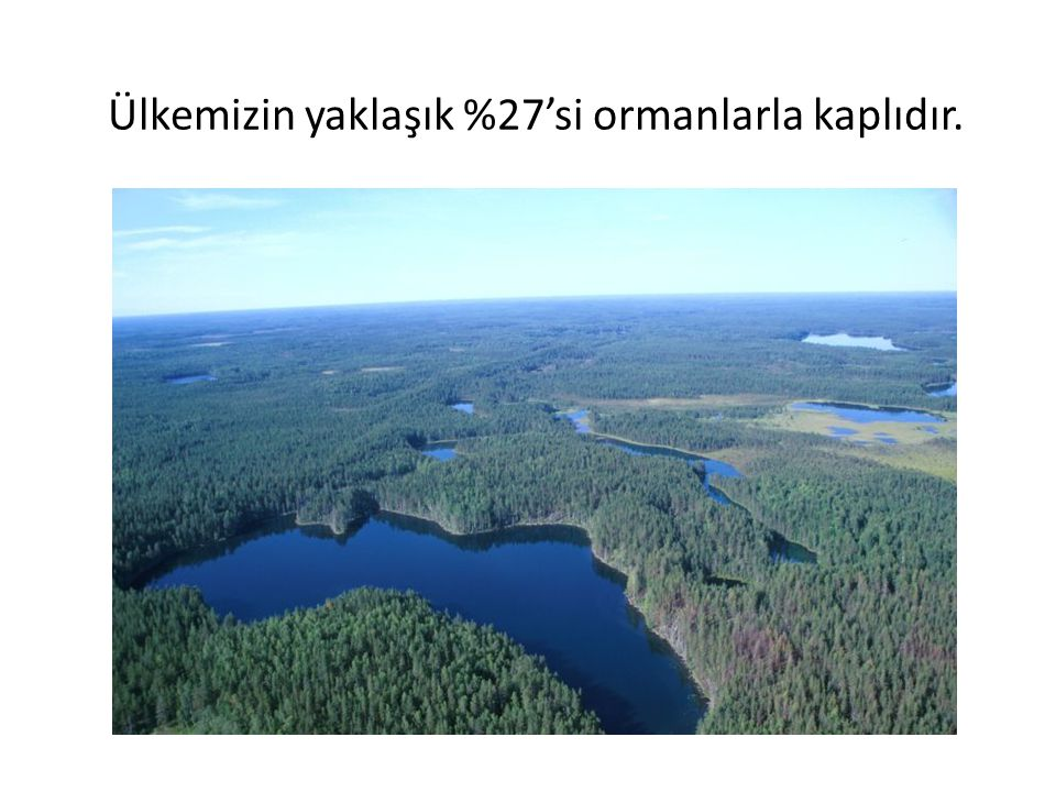 Ülkemizin yaklaşık %27'si ormanlarla kaplıdır.