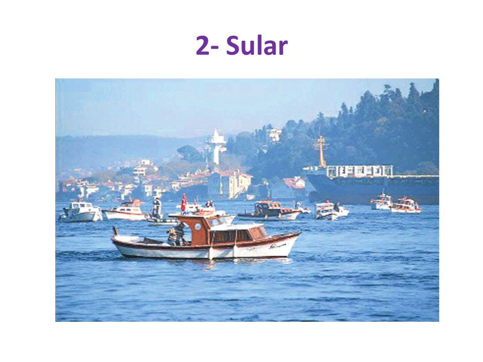 2- Sular