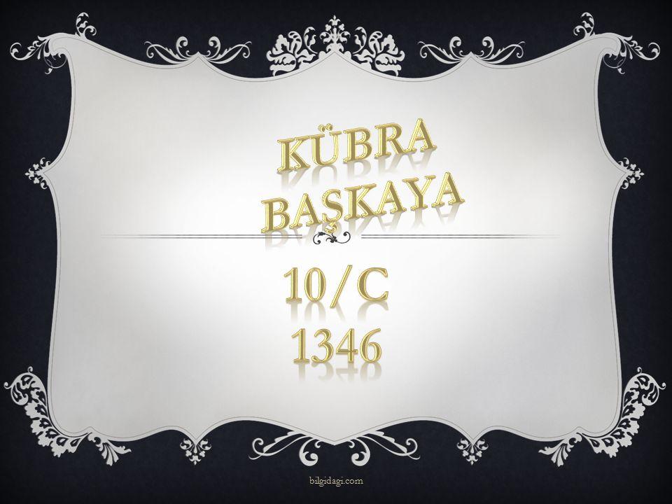 Kübra başkaya 10/c 1346 bilgidagi.com