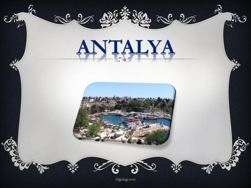 ANTALYA bilgidagi.com