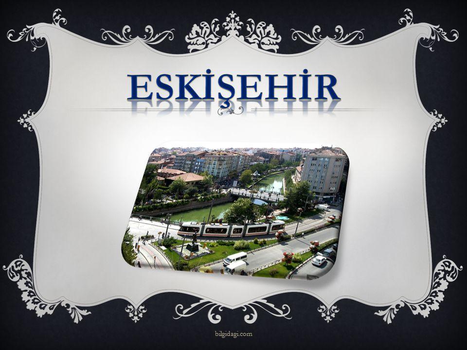 ESKİŞEHİR bilgidagi.com