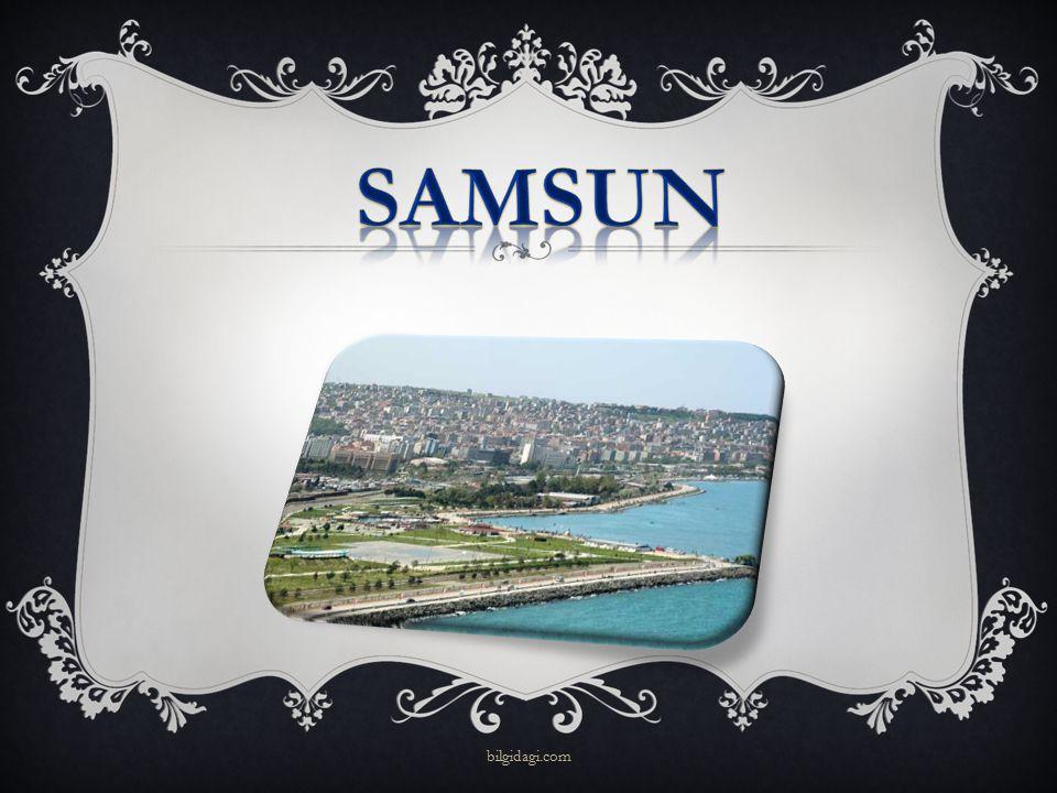 samsun bilgidagi.com