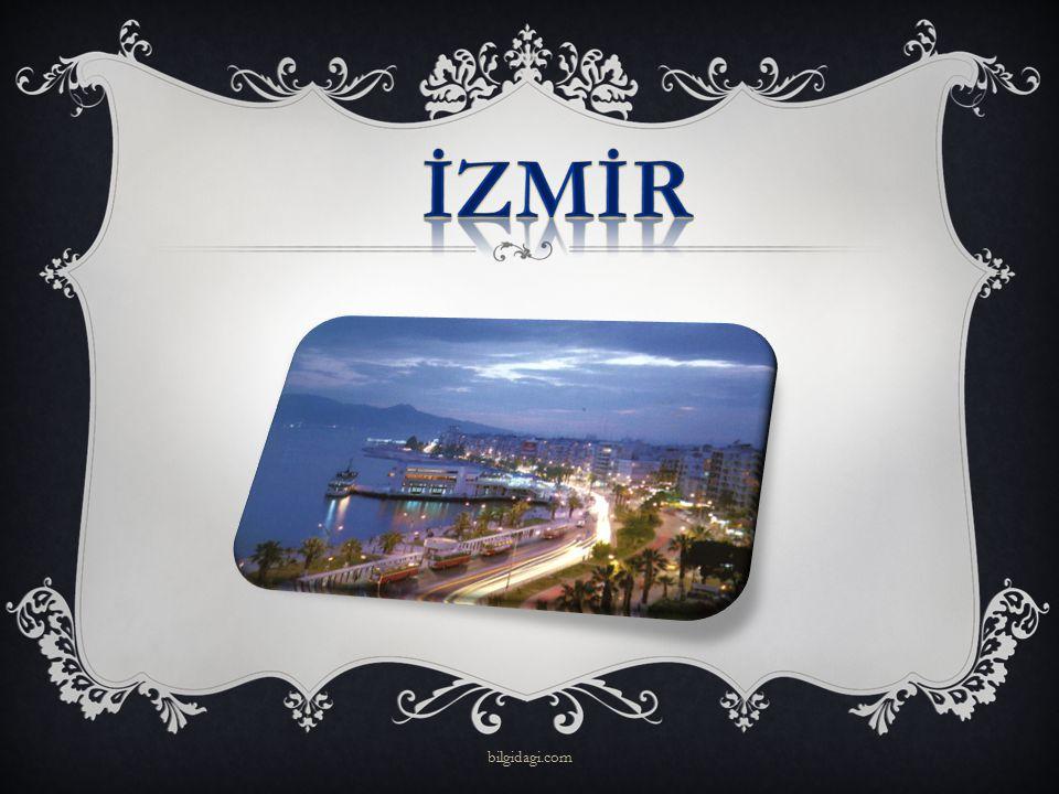 İZMİR bilgidagi.com
