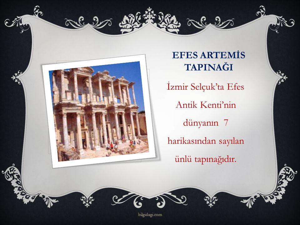 EFES ARTEMİS TAPINAĞI İzmir Selçuk'ta Efes Antik Kenti'nin dünyanın 7 harikasından sayılan ünlü tapınağıdır.