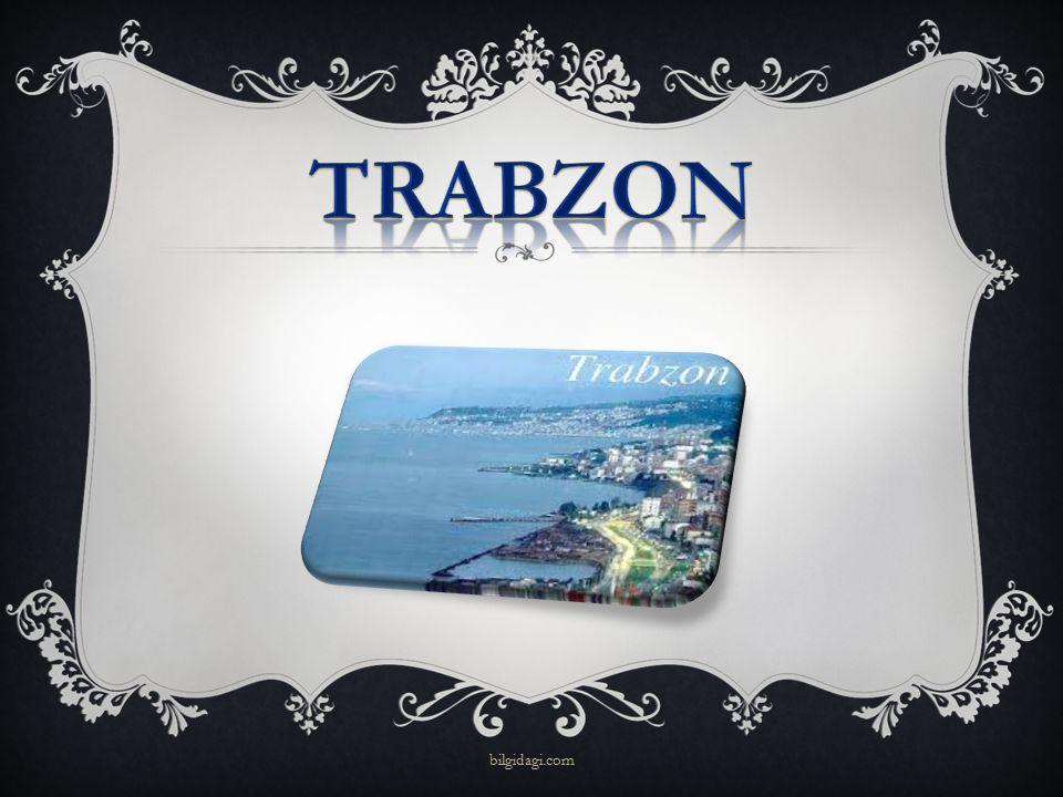 TRABZON bilgidagi.com