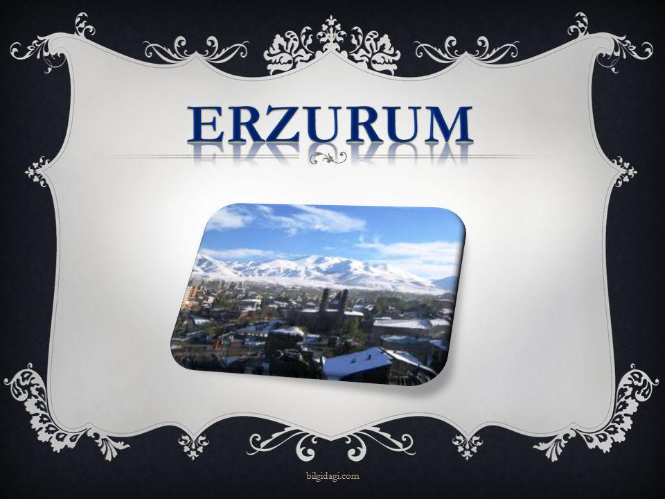 ERZURUM bilgidagi.com