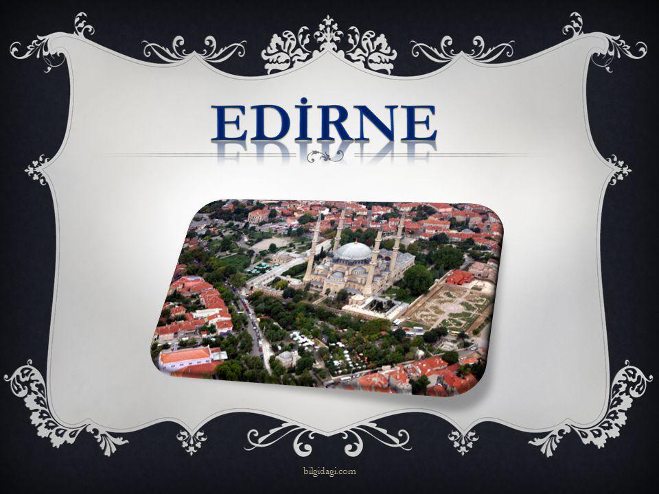 EDİRNE bilgidagi.com