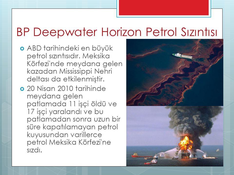 BP Deepwater Horizon Petrol Sızıntısı