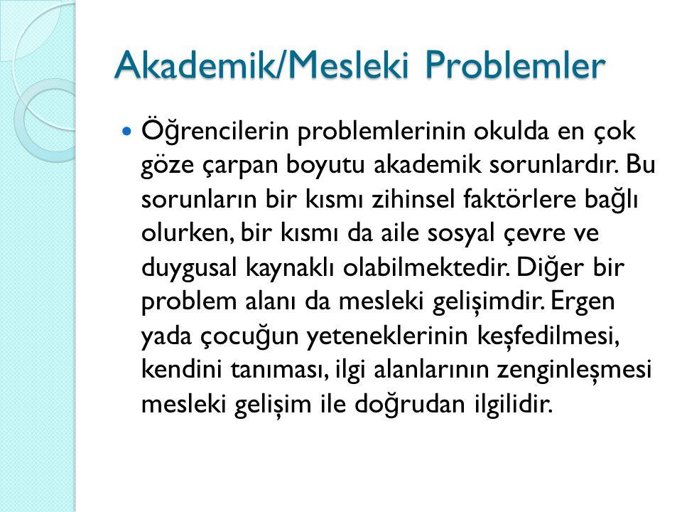 Akademik/Mesleki Problemler