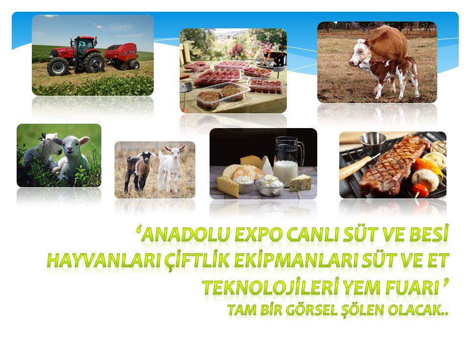 'ANADOLU EXPO CANLI SÜT ve BESİ HAYVANLARI ÇİFTLİK EKİPMANLARI SÜT ve ET TEKNOLOJİLERİ YEM FUARI '