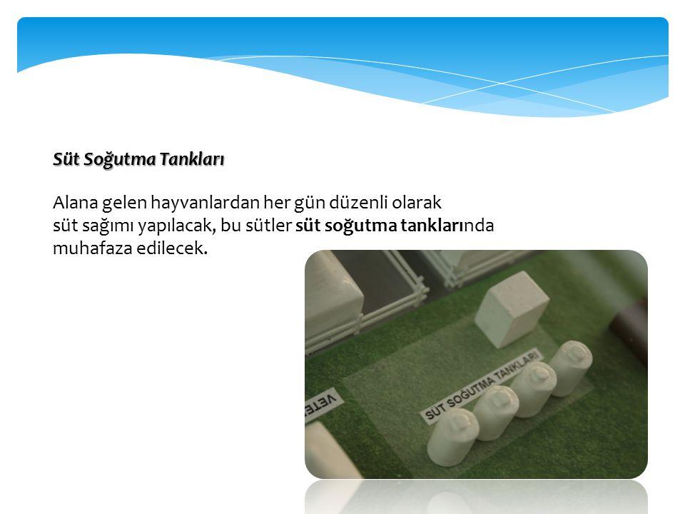 Süt Soğutma Tankları Alana gelen hayvanlardan her gün düzenli olarak. süt sağımı yapılacak, bu sütler süt soğutma tanklarında.