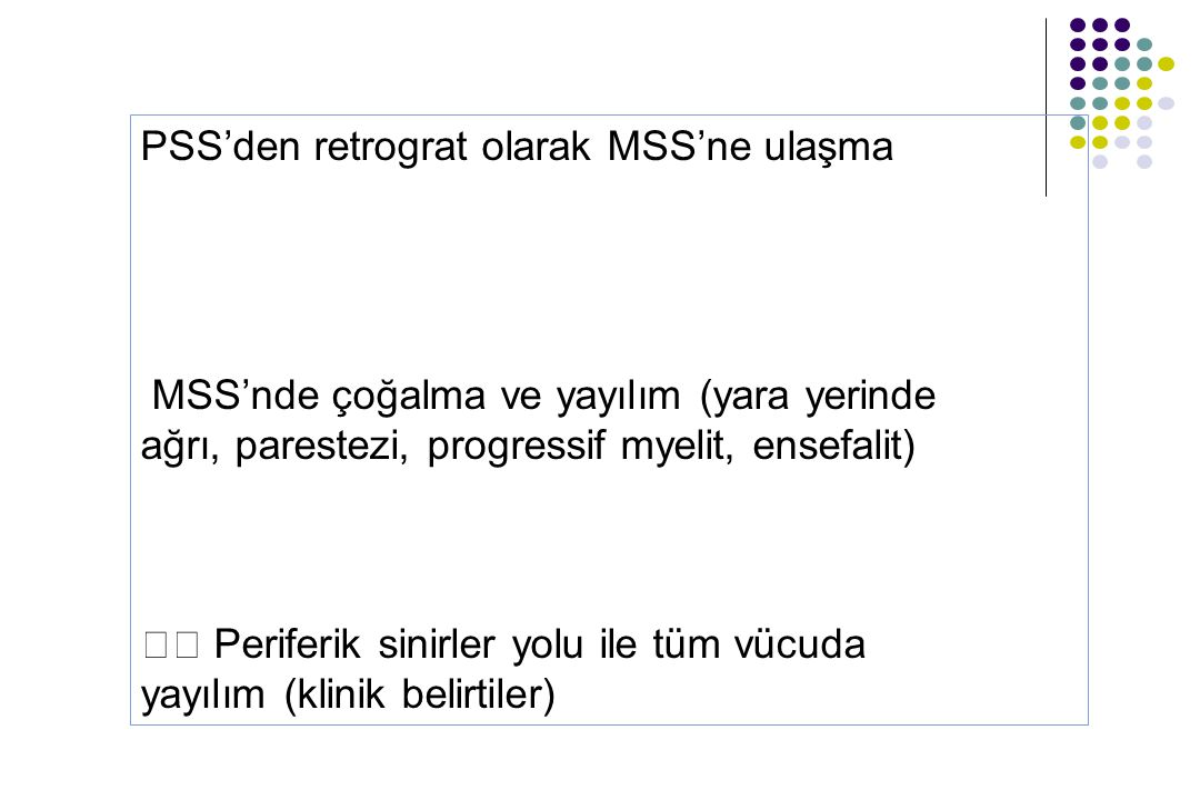 PSS'den retrograt olarak MSS'ne ulaşma
