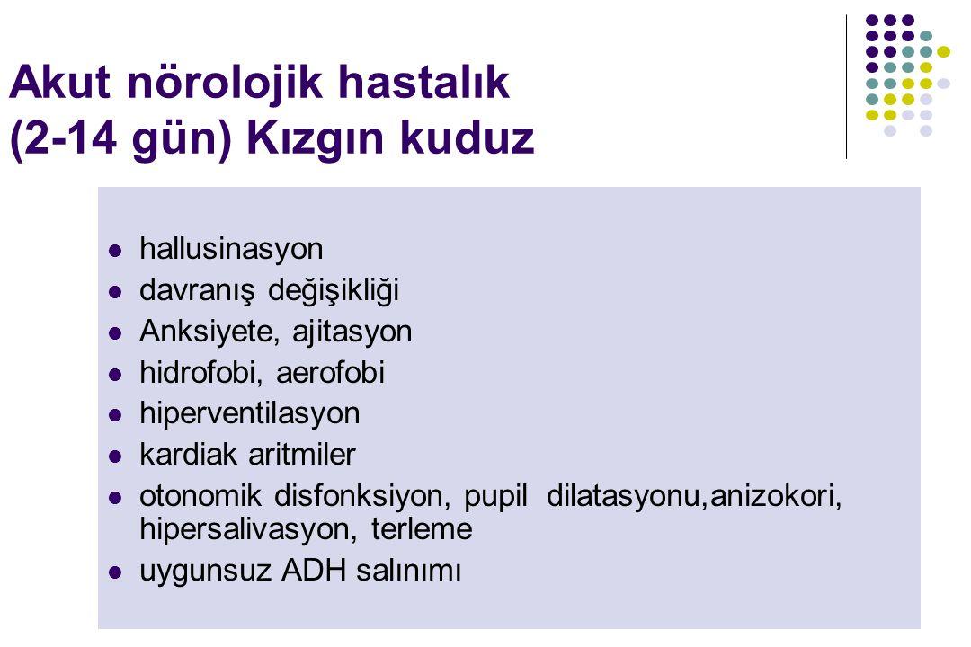 Akut nörolojik hastalık (2-14 gün) Kızgın kuduz