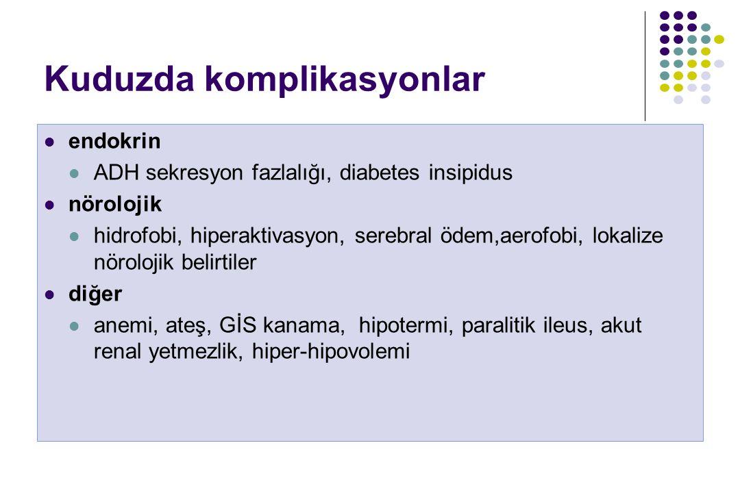 Kuduzda komplikasyonlar