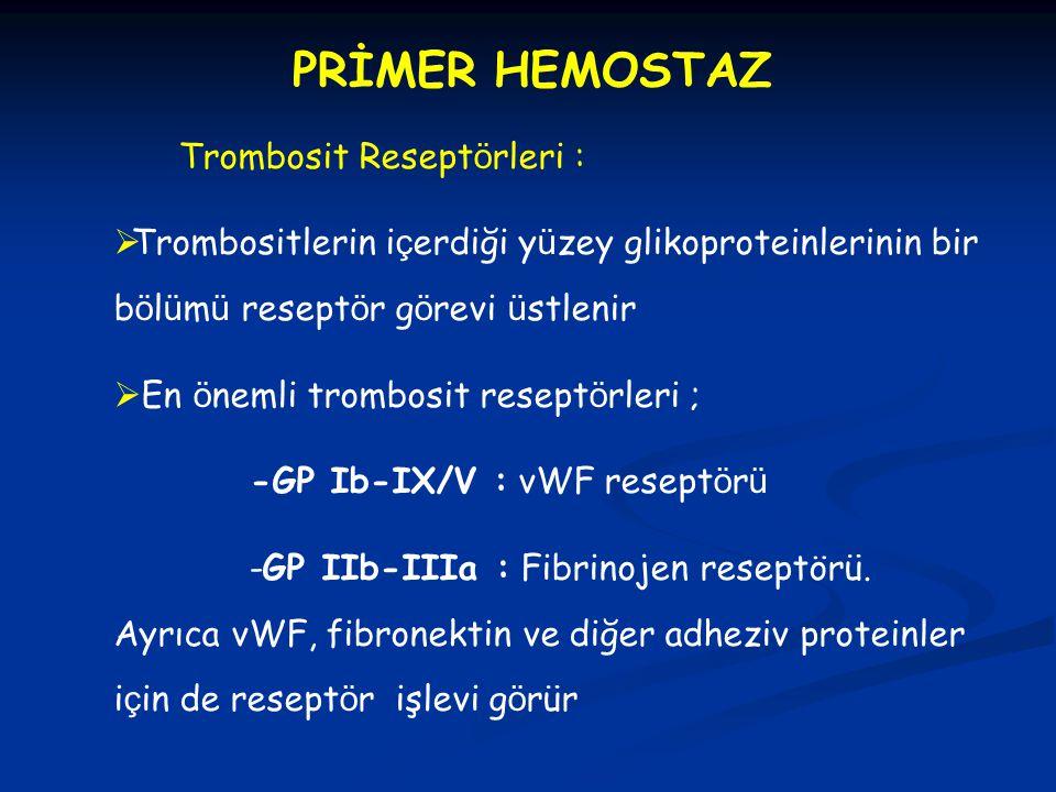 PRİMER HEMOSTAZ Trombosit Reseptörleri :