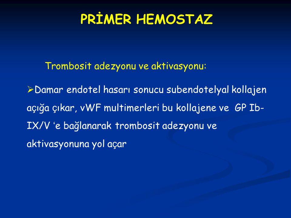 PRİMER HEMOSTAZ Trombosit adezyonu ve aktivasyonu: