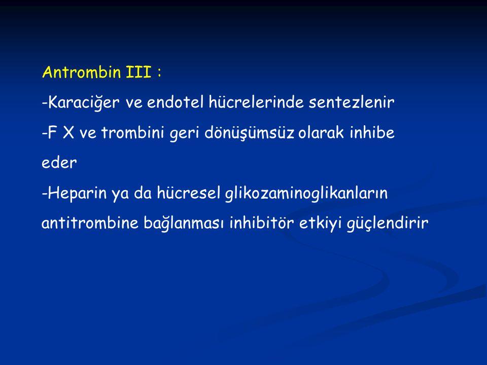 Antrombin III : -Karaciğer ve endotel hücrelerinde sentezlenir. -F X ve trombini geri dönüşümsüz olarak inhibe eder.