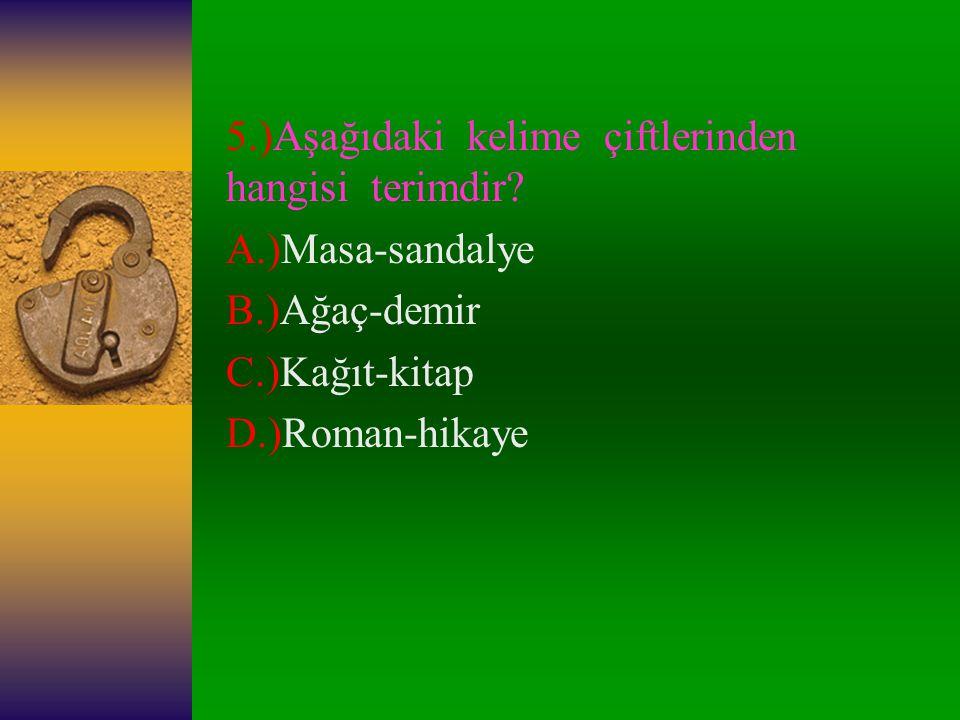 5.)Aşağıdaki kelime çiftlerinden hangisi terimdir