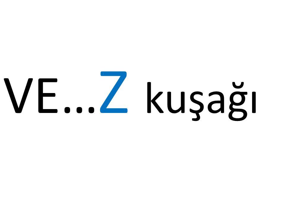 VE…Z kuşağı