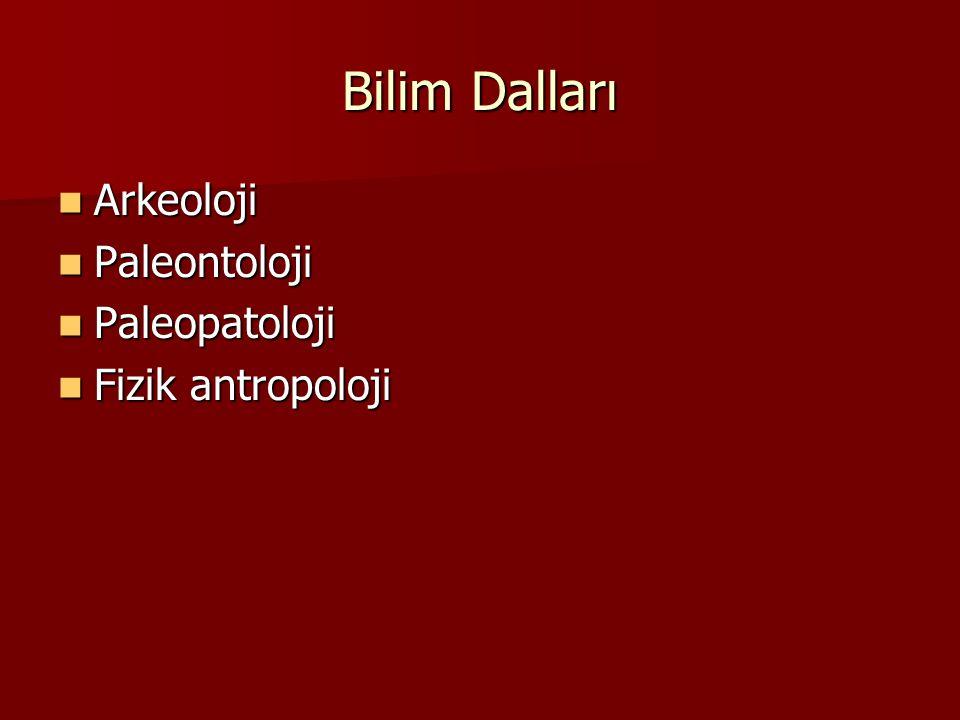 Bilim Dalları Arkeoloji Paleontoloji Paleopatoloji Fizik antropoloji