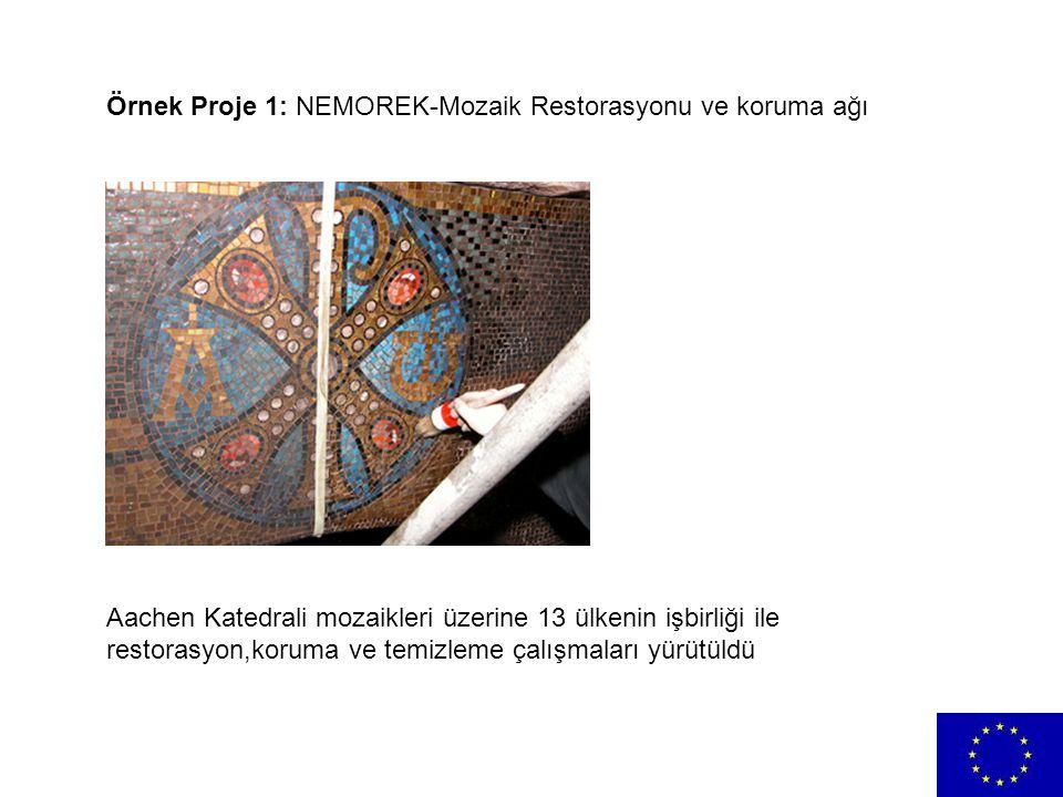 Örnek Proje 1: NEMOREK-Mozaik Restorasyonu ve koruma ağı