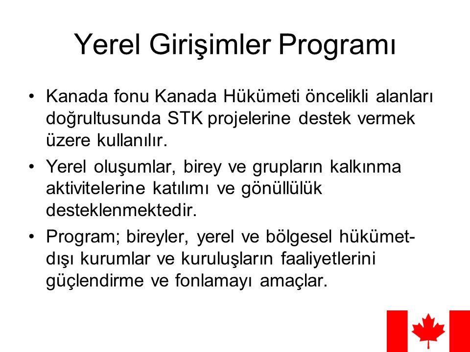 Yerel Girişimler Programı