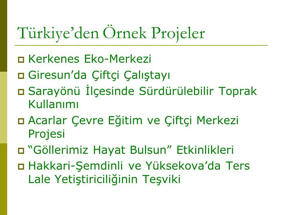 Türkiye'den Örnek Projeler