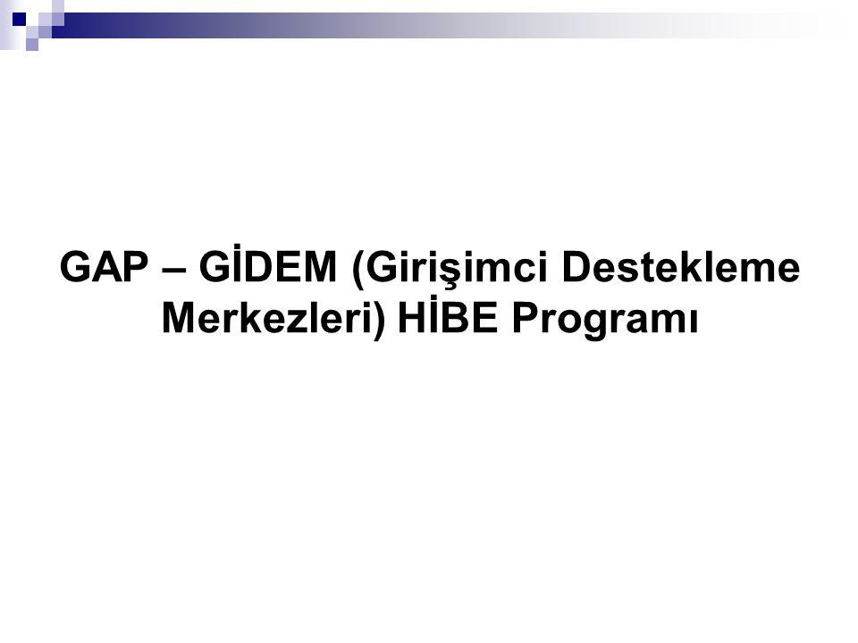 GAP – GİDEM (Girişimci Destekleme Merkezleri) HİBE Programı