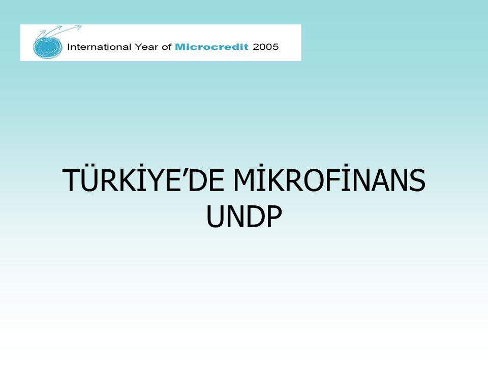 TÜRKİYE'DE MİKROFİNANS UNDP