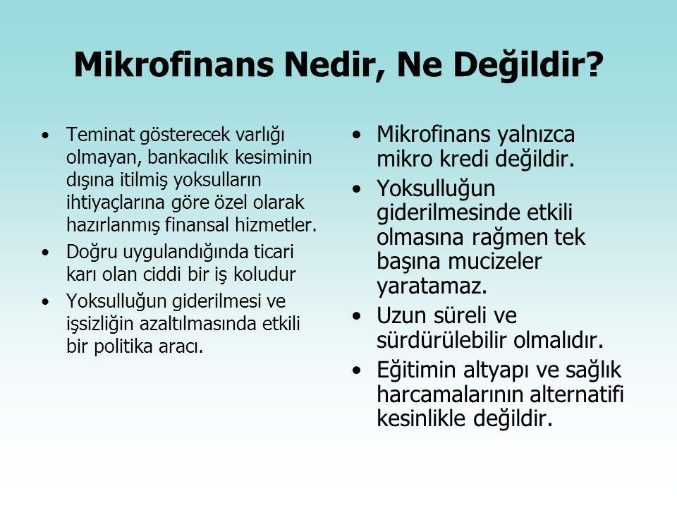 Mikrofinans Nedir, Ne Değildir