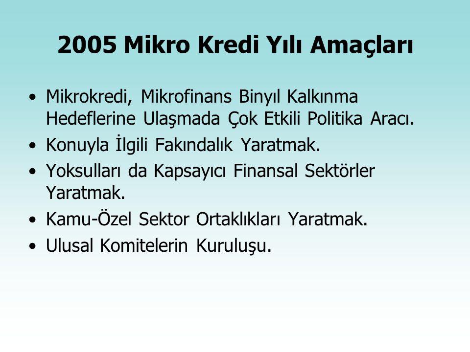 2005 Mikro Kredi Yılı Amaçları