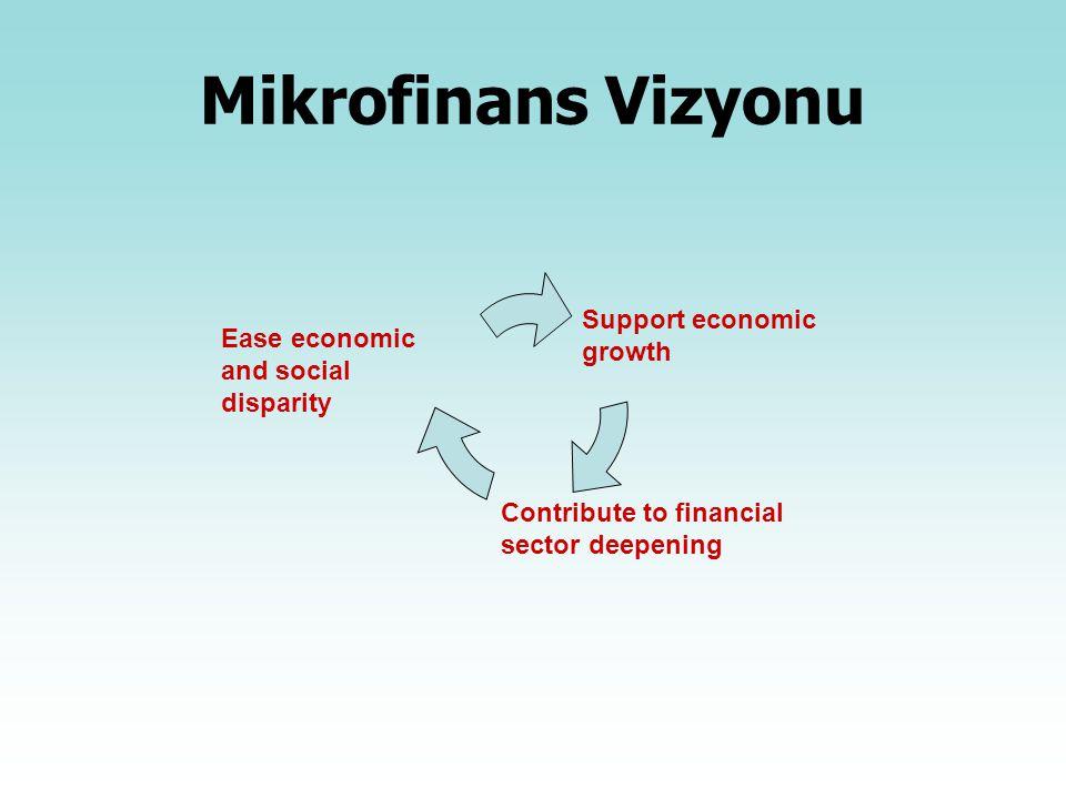 Mikrofinans Vizyonu