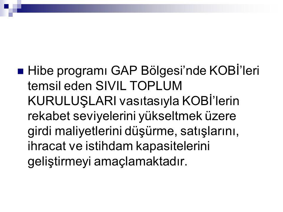 Hibe programı GAP Bölgesi'nde KOBİ'leri temsil eden SIVIL TOPLUM KURULUŞLARI vasıtasıyla KOBİ'lerin rekabet seviyelerini yükseltmek üzere girdi maliyetlerini düşürme, satışlarını, ihracat ve istihdam kapasitelerini geliştirmeyi amaçlamaktadır.