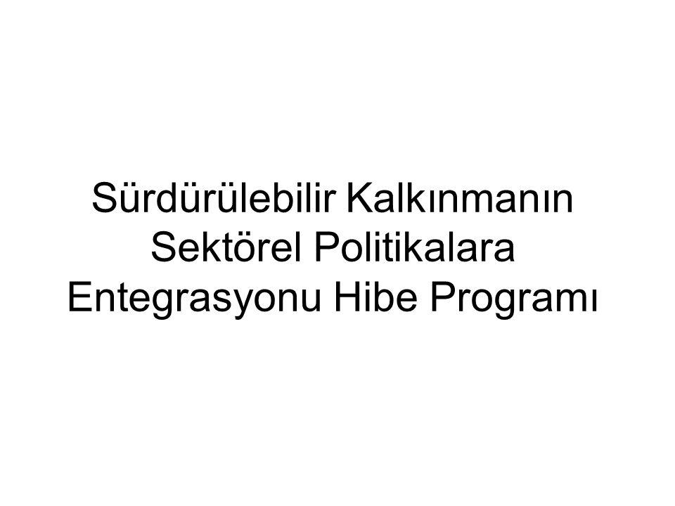 Sürdürülebilir Kalkınmanın Sektörel Politikalara Entegrasyonu Hibe Programı