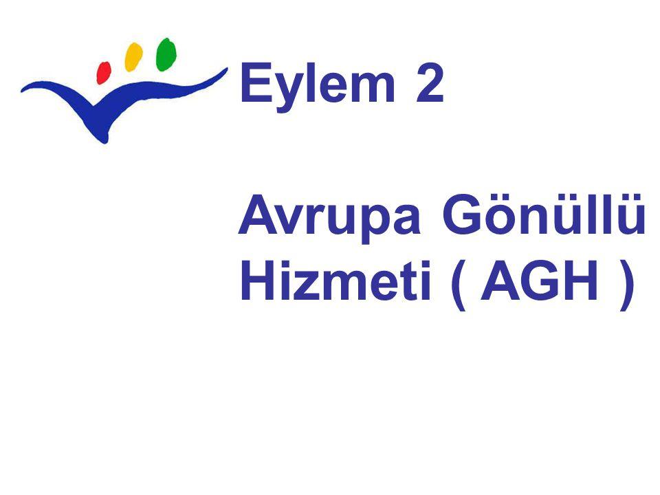 Eylem 2 Avrupa Gönüllü Hizmeti ( AGH )