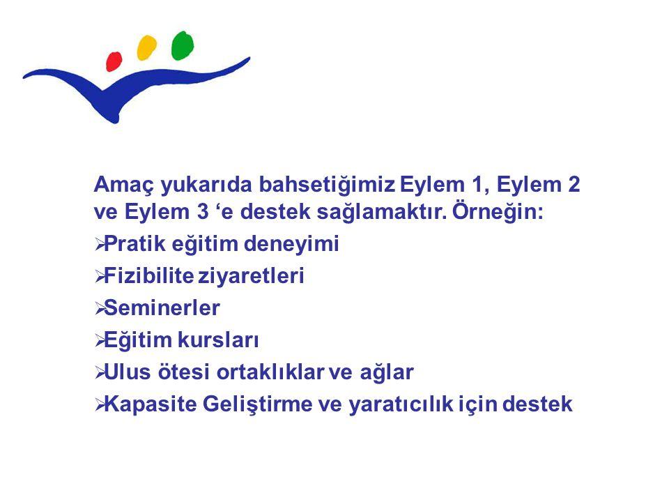Amaç yukarıda bahsetiğimiz Eylem 1, Eylem 2 ve Eylem 3 'e destek sağlamaktır. Örneğin: