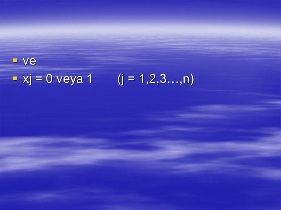 ve xj = 0 veya 1 (j = 1,2,3…,n)