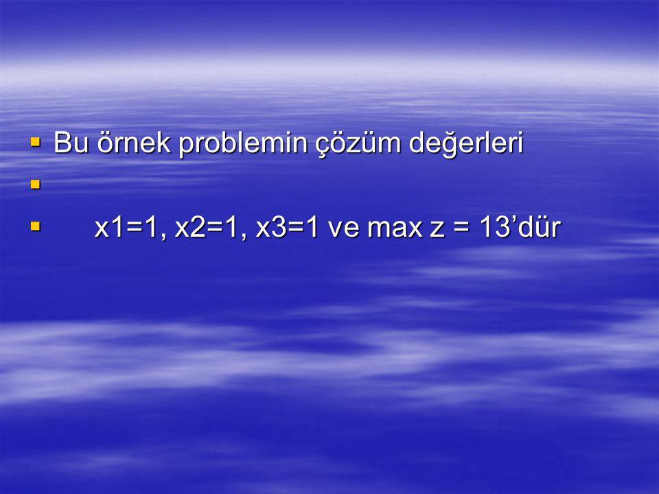 Bu örnek problemin çözüm değerleri