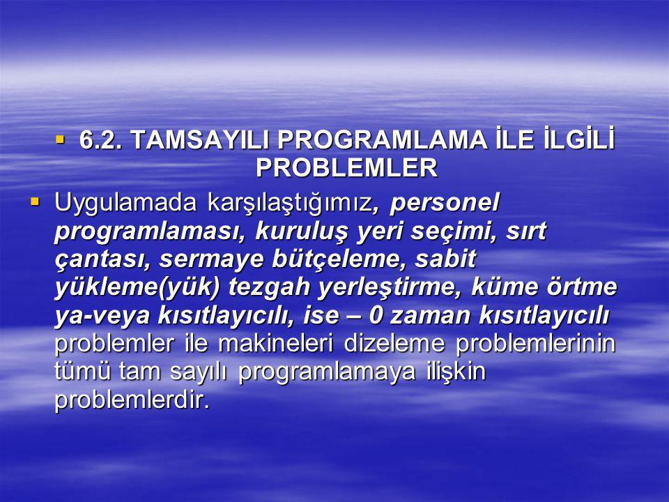 6.2. TAMSAYILI PROGRAMLAMA İLE İLGİLİ PROBLEMLER