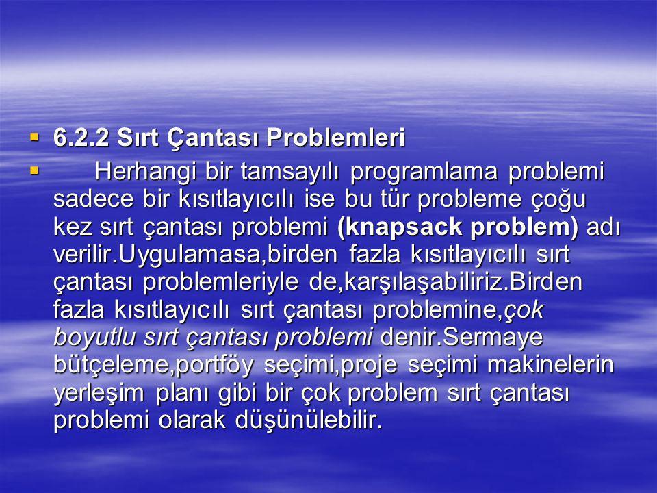 6.2.2 Sırt Çantası Problemleri