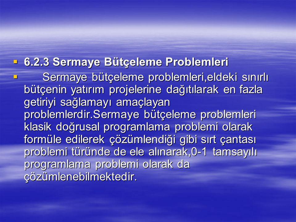 6.2.3 Sermaye Bütçeleme Problemleri