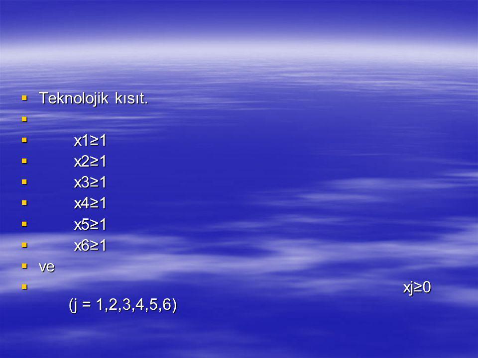 Teknolojik kısıt. x1≥1 x2≥1 x3≥1 x4≥1 x5≥1 x6≥1 ve xj≥0 (j = 1,2,3,4,5,6)