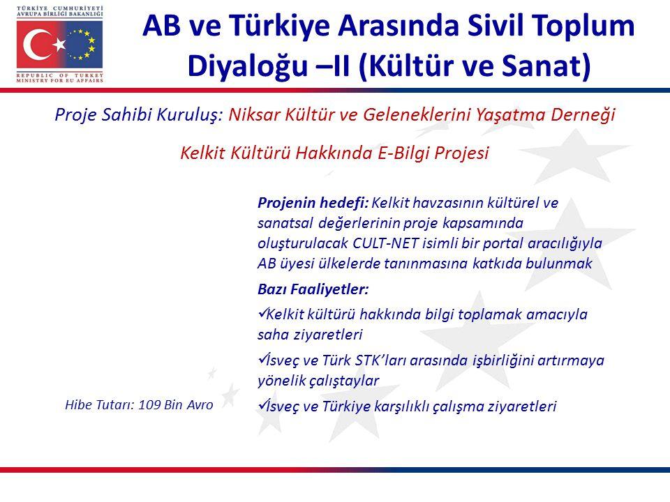 AB ve Türkiye Arasında Sivil Toplum Diyaloğu –II (Kültür ve Sanat)