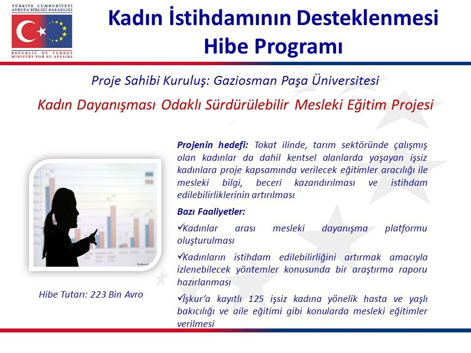 Kadın İstihdamının Desteklenmesi Hibe Programı