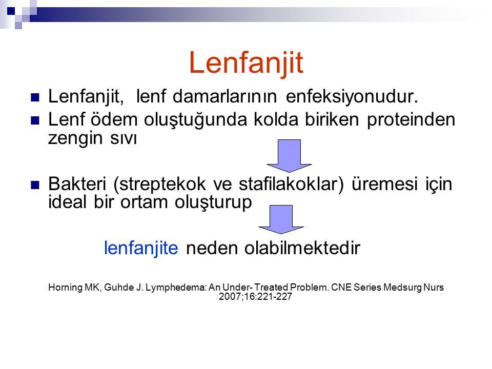 Lenfanjit Lenfanjit, lenf damarlarının enfeksiyonudur.