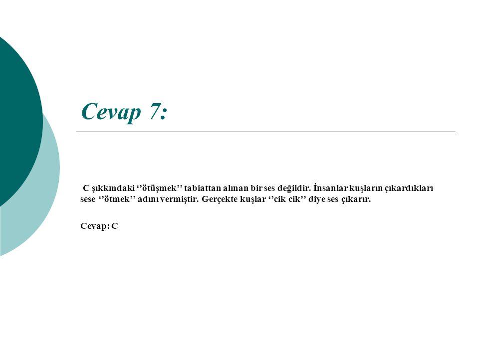 Cevap 7: