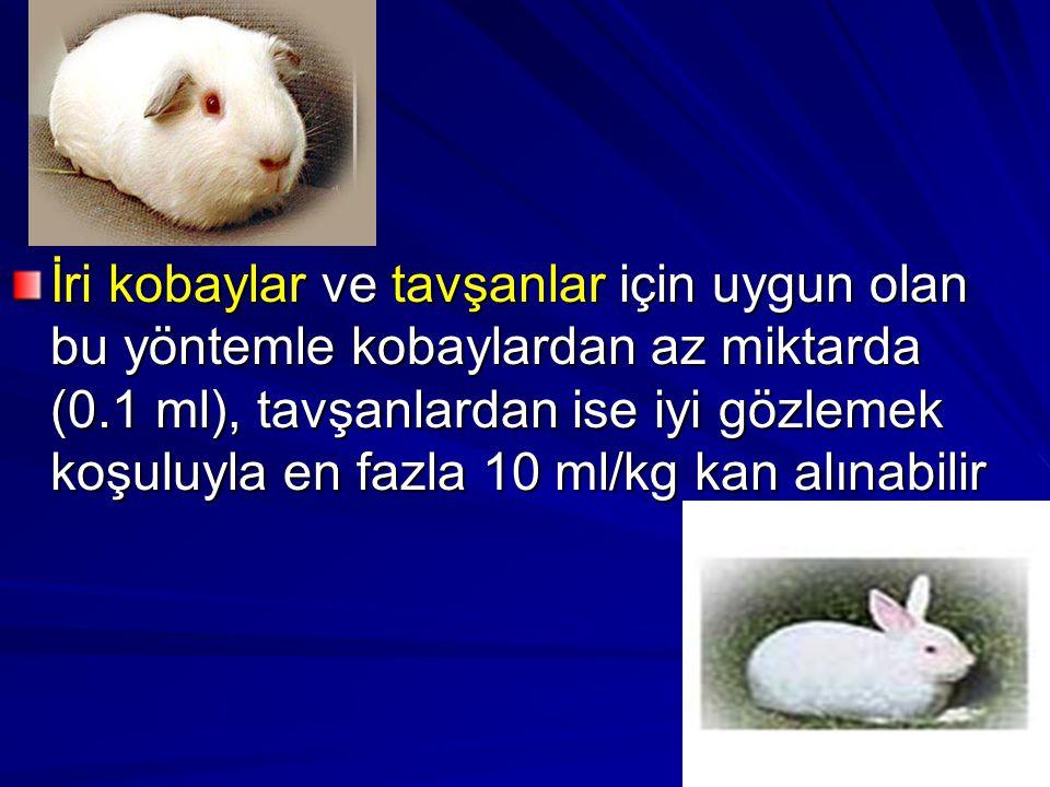 İri kobaylar ve tavşanlar için uygun olan bu yöntemle kobaylardan az miktarda (0.1 ml), tavşanlardan ise iyi gözlemek koşuluyla en fazla 10 ml/kg kan alınabilir