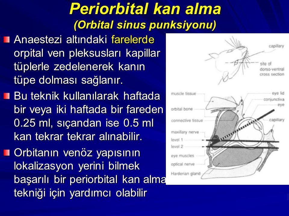 Periorbital kan alma (Orbital sinus punksiyonu)
