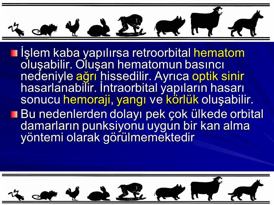 İşlem kaba yapılırsa retroorbital hematom oluşabilir